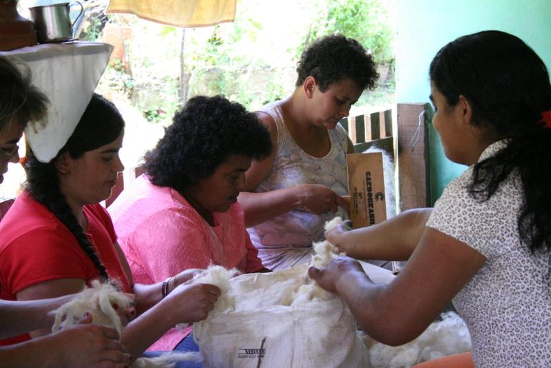 a classificação e separação da lã é feita totalmente à mão.