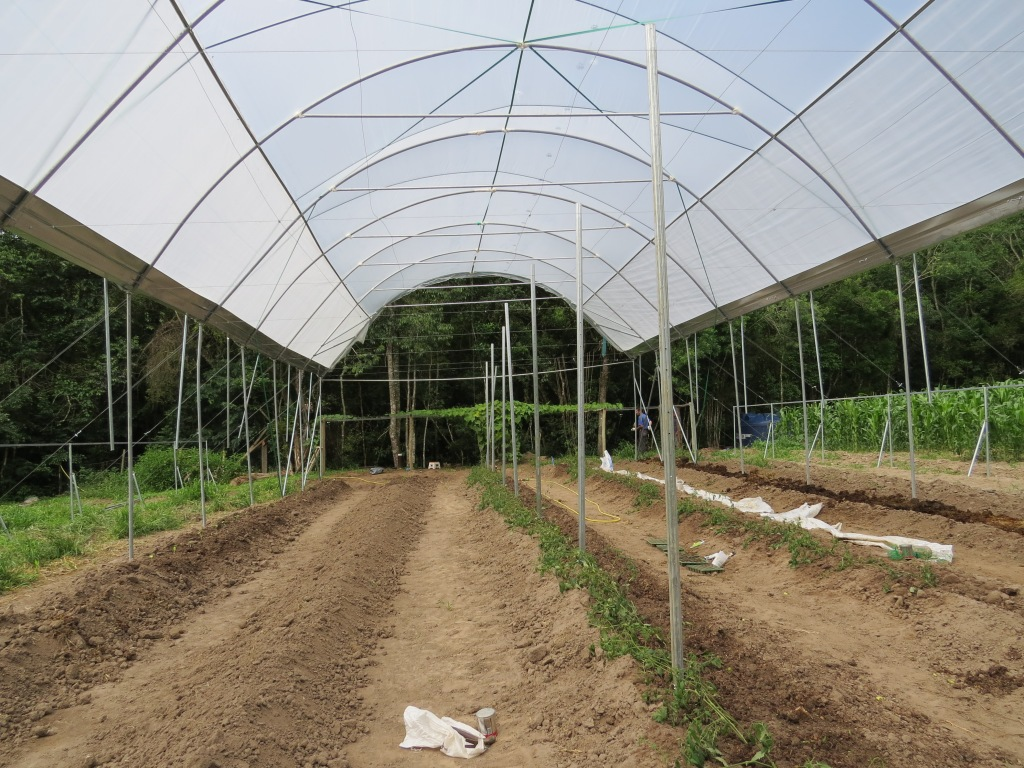 Estufa sendo implantada / Greenhouse being installed